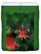 Canadian Columbine Duvet Cover