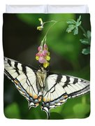 Canadian Tiger Swallowtail Butterfly-underside Duvet Cover