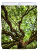 Canopy Of Color At Angel Oak Tree  Duvet Cover