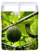 Cantaloupe And Hanging On Tree 1 Duvet Cover