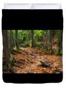 Canyon Falls Trail 1 Duvet Cover