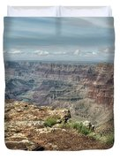 Canyon View From Navajo Point Duvet Cover