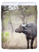 Cape Buffalo In A Clearing Duvet Cover