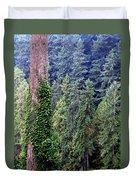 Capilano Canyon Ivy Duvet Cover by Will Borden