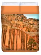 Capitol Gorge Desert Varnish Duvet Cover