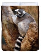 Captive Ring Tailed Lemur Perched In A Stone Tree Duvet Cover