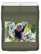 Capuchin Monkey Chewing On A Stick Duvet Cover