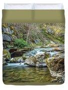 Caradocs Falls 1 Duvet Cover