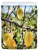 Carambola Fruit On The Tree Duvet Cover