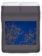 Cardinal Against Blue Sky Duvet Cover