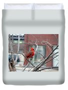 Cardinal Amid The Twigs Duvet Cover