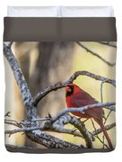 Cardinal Among The Branches Duvet Cover