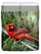 Cardinal Attitude Duvet Cover