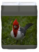 Cardinal Front View In Grass Duvet Cover