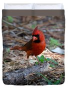 Cardinal In Charge Duvet Cover by Julie Cameron