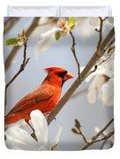 Cardinal In Magnolia Duvet Cover