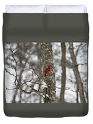 Cardinal In Snow Storm Duvet Cover
