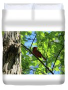 Cardinal In The Springtime Duvet Cover