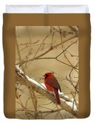 Cardinal In Winter Duvet Cover