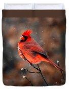 Cardinal On A Snowy Day Duvet Cover