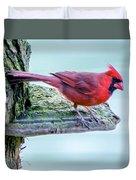Cardinal Perched Duvet Cover