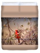 Cardinal With A Mouthful Of Hips Duvet Cover