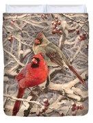 Cardinals Duvet Cover
