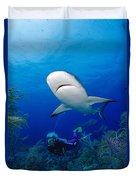 Caribbean Reef Shark Duvet Cover by Dave Fleetham - Printscapes