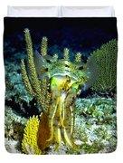 Caribbean Squid At Night - Alien Of The Deep Duvet Cover