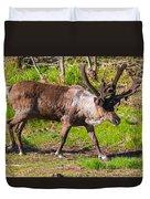 Caribou Antlers In Velvet Duvet Cover