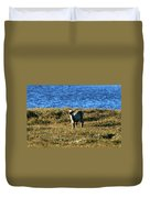 Caribou Fawn Duvet Cover