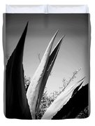 Carmel Mission Agave In B And W Duvet Cover