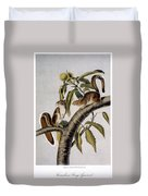 Carolina Grey Squirrel Duvet Cover