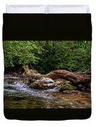 Carolina Stream Duvet Cover