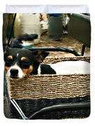 Carriage Dog Duvet Cover