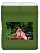 Carribean Flamingo Bird Ruffling His Feathers Duvet Cover