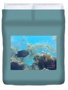 Carribean Sea Life Duvet Cover