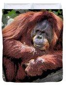 Cartoon Comic Style Orangutan Sitting In Tree Fork Duvet Cover