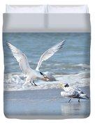 Caspian Tern Feeding Young Duvet Cover