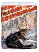 Cat Against Stone Duvet Cover