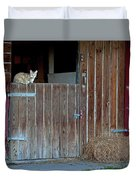 Cat And Barn Duvet Cover