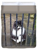Cat At The Gate Duvet Cover