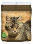 Cat In A Yard Duvet Cover
