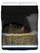 Cat In The Window Duvet Cover