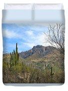 Catalina State Park 2 Duvet Cover