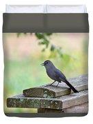 Catbird Calling Duvet Cover