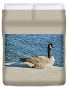 Catching Some Rays Duvet Cover