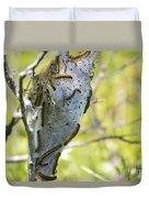 Caterpillars #2 Duvet Cover by Stephanie  Varner
