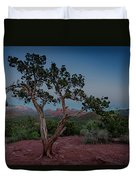 Cathedral Rock Overview Duvet Cover by Gary Lengyel