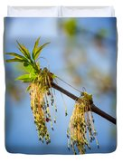 Catkin Time 2 Duvet Cover